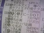 DVC00065[1].jpg